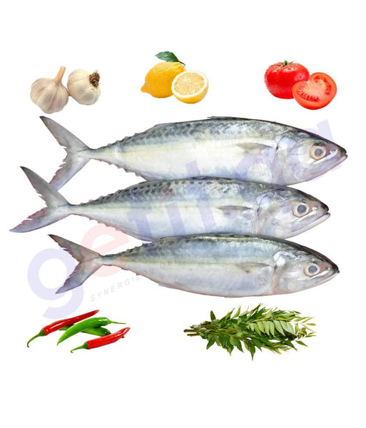 Fresh Fish - Mackrel - (Ayala)