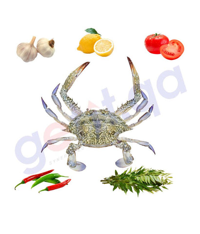 Fresh Fish - QUBQUB - قبقب - CRAB (Female) 1Kg