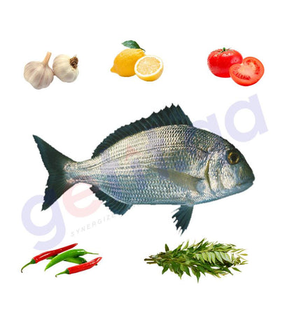 Fresh Fish - QURQUFAN - قرقفان - HAFFARA SEABREAM 1KG