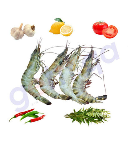 Fresh Fish - ROBIAN - روبيان - PRAWN - Medium 1KG