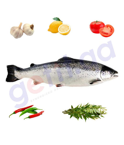 Buy Fresh Salmon Fish Big Norway Price Online in Doha Qatar