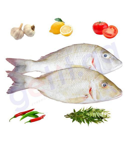 Fresh Fish - SHEIRII  -RED SPOT (Medium)