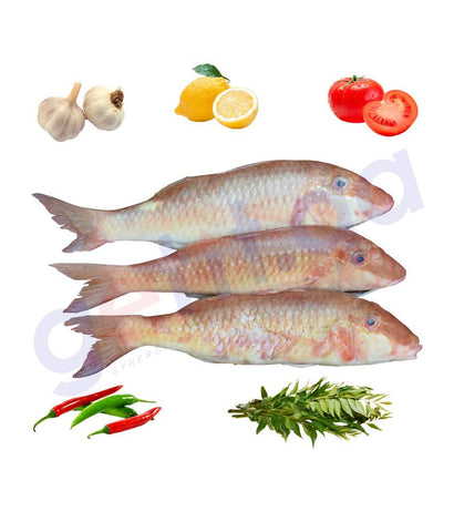 Fresh Fish - SULTAN IBRAHIM - سلطان ابراهيم - PEARLY GOATFISH 1KG
