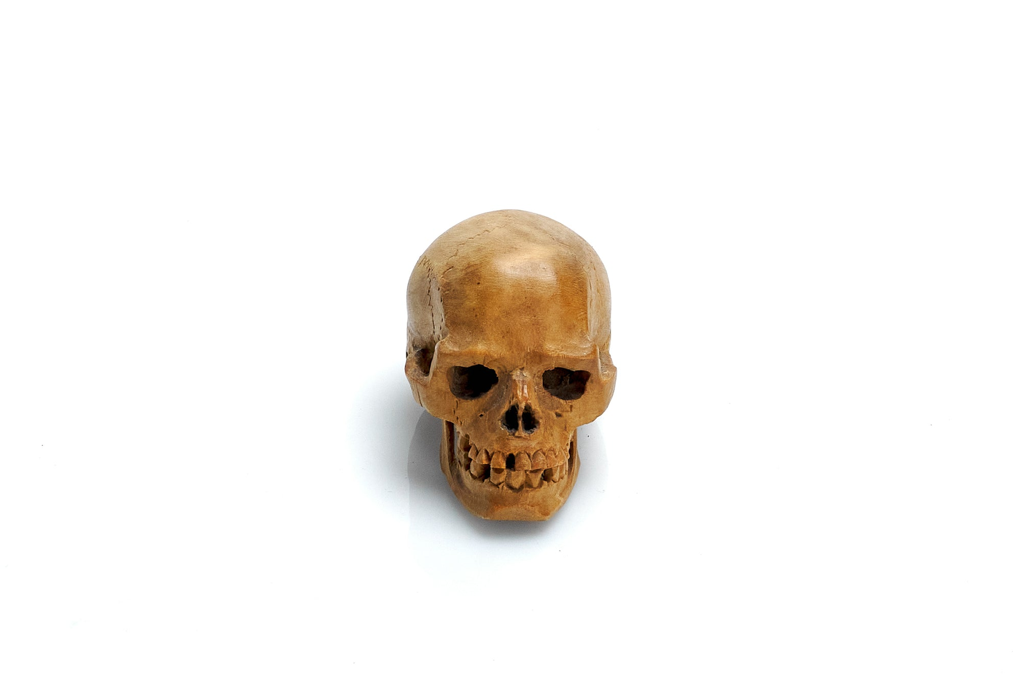Carved Wooden Skull, Turn of the Century