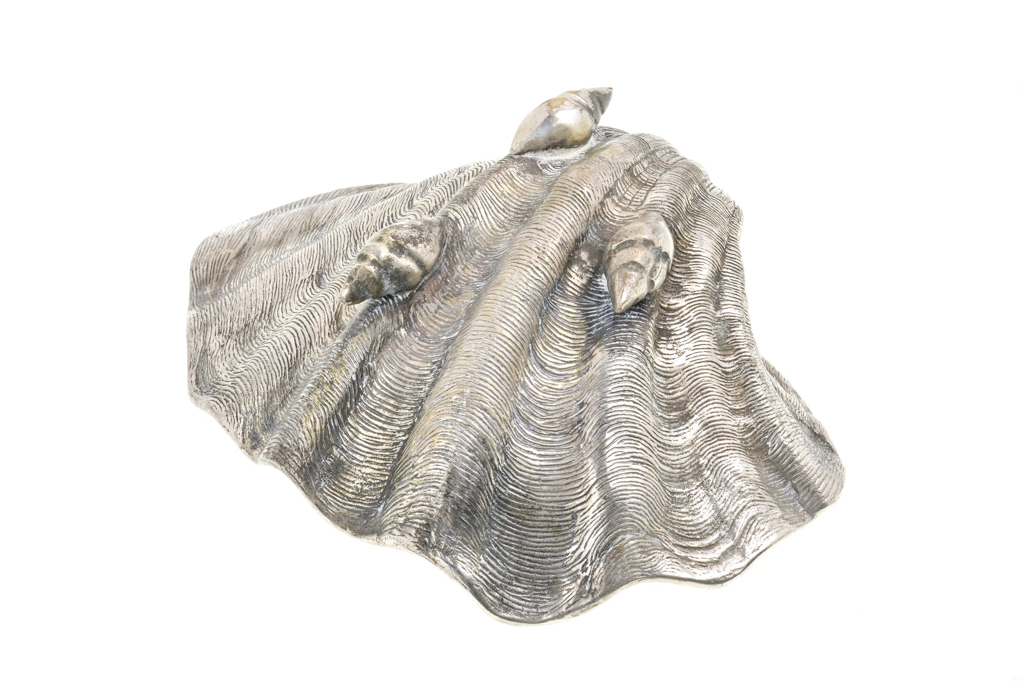 Silver Shell Sculpture