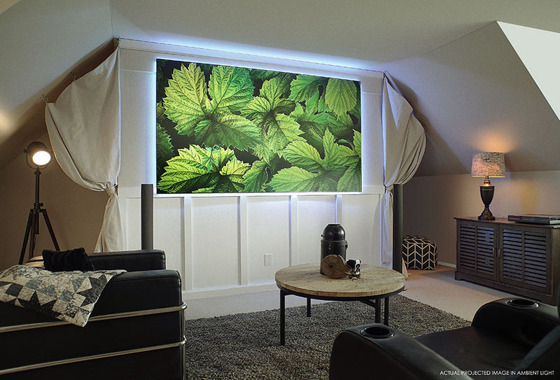 EPV Screens Polar Star eFinity Projector Screen