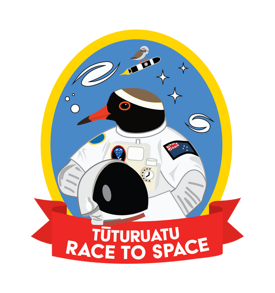 Special Edition patch - Race To Space (tūturuatu)