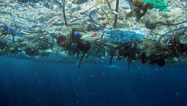 What Is Plastic Soup?