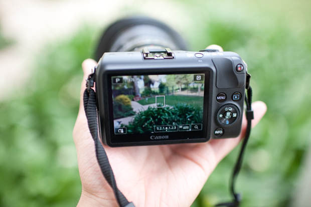 How is a Mirrorless Camera different than a DSLR?