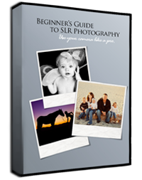 200 px slr photography guide box