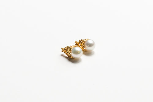 KAMBOJA IVORY EARRINGS
