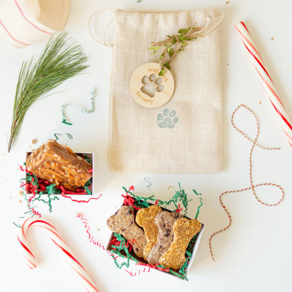 Paws and Pretzels Holiday Gift Set