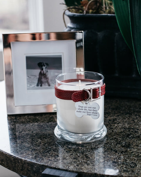 Maggie's Light ™ Dog Memorial Candle - Red (Big Stick)