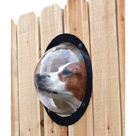 PetPeek Fence Window for Pets