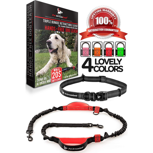 Hands Free Dog Leash - For One/Two Medium to Large Dogs (up to 150lbs) - Walking/Hiking/Dog Training - Heavy Duty Extra Long Bungee Dog Leash