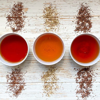 All about Rooibos and Honeybush