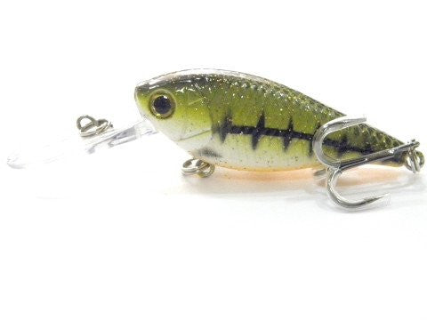 Deep Diving Crankbait BSS549