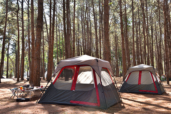 /collections/tents