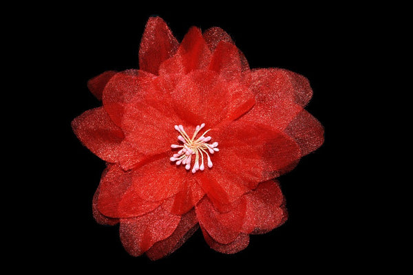Camellia Flower - Red