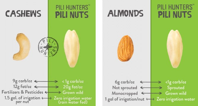 How do pili nuts compare to cashews and almonds? Pili Hunters the original pili nuts