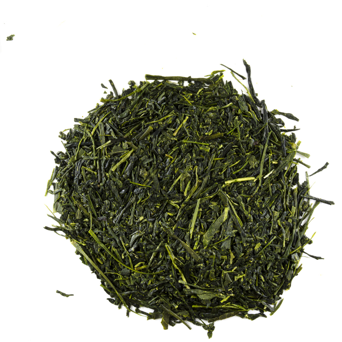 Saemidori Sencha Premium - Todd & Holland Tea Merchants