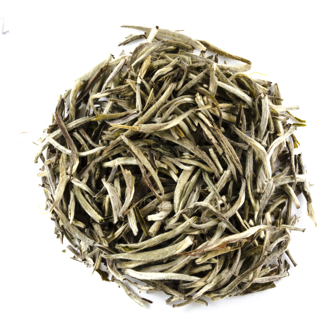 Khongea Assam Silver Needles