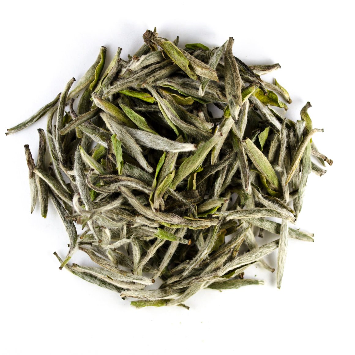 Fujian Silver Needles - Todd & Holland Tea Merchants