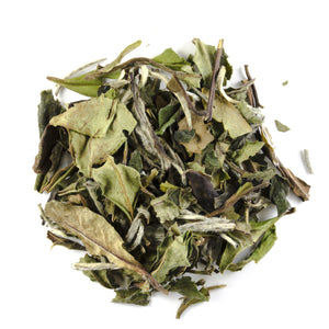 White Peony Special - Todd & Holland Tea Merchants