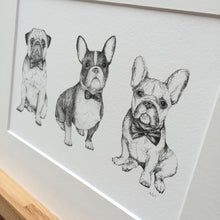 Close-up of Black and white dog drawing fine art print