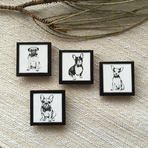 French Bulldog, Pug, Boston Terrier, Chihuahua black fridge magnets