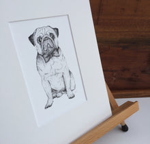 Dog pug illustration fine art print