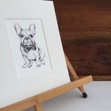 Black and white French Bulldog dog portrait fine art print