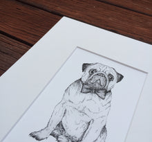 Pug dog drawing fine art print
