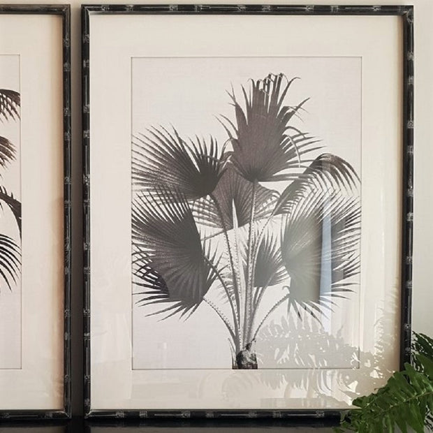 A Little Morocco Plantation Palms Framed Print Set B