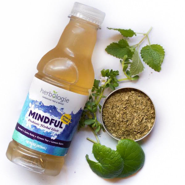 Mindful Fermented Herbal Elixir