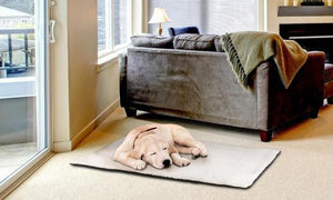 Self-Heating Pet Bed - Goslash
