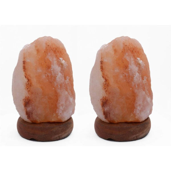 Accentuations 8-inch Natural Shaped Himalayan Salt Lamp (Set of 2) - Desk Lamps