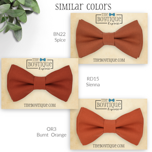 Cinnamon Bow Tie in BN23
