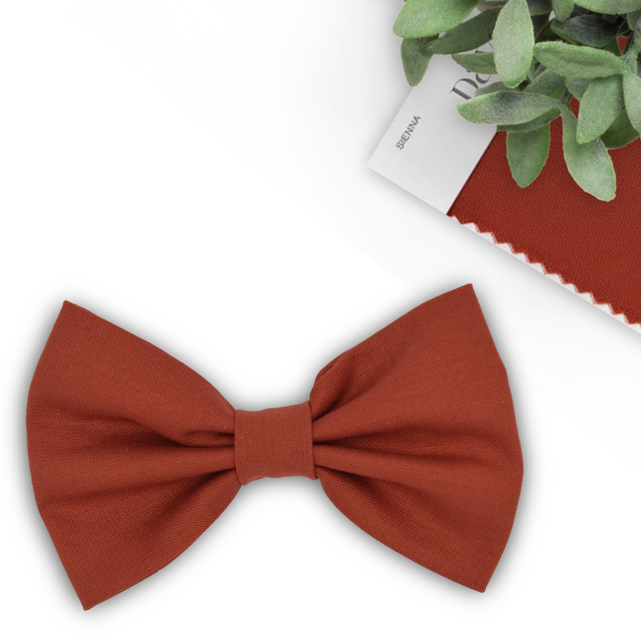 sienna bow tie and brown suspenders