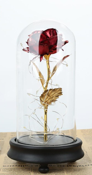 Romantic Eternal Rose