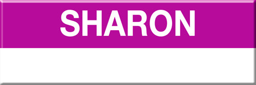 MBTA Commuter Rail Sharon Station Magnet
