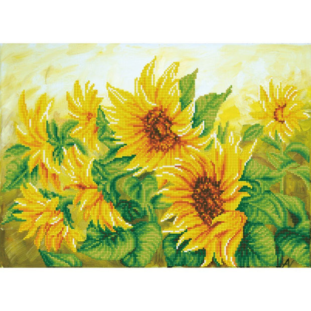 Hazy Daze Sunflowers