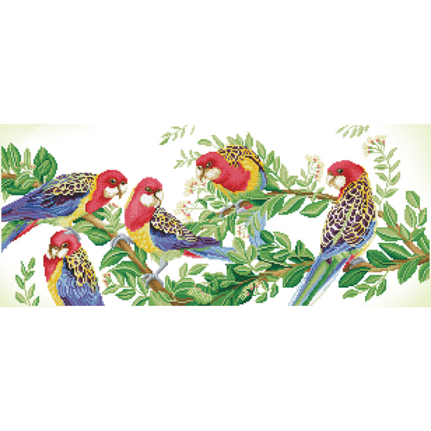 Diamond Dotz - Eastern Rosella Gathering