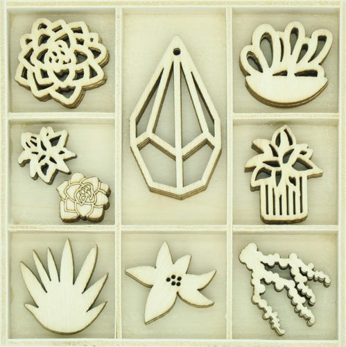 Flourish Pack Succulents 45pcs