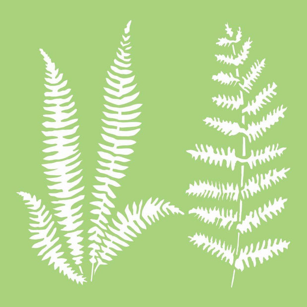 6x6 Designer Template - Ferns