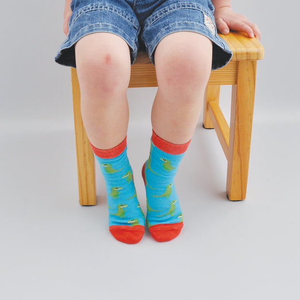 Kids Socks - DINO 4-5 years
