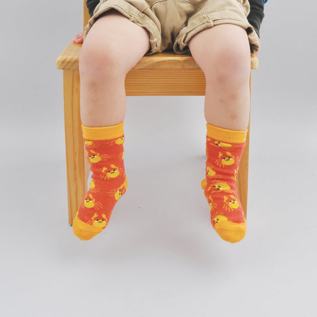Kids Socks - BEACHY 2-3 years