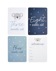 Baby Milestone Cards - BOY