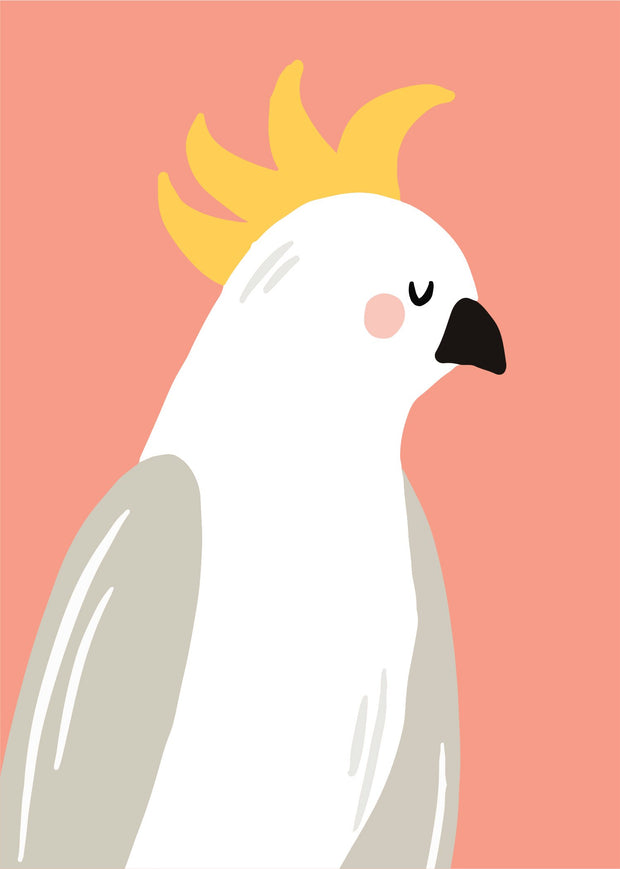 Little Aussie - Cockatoo