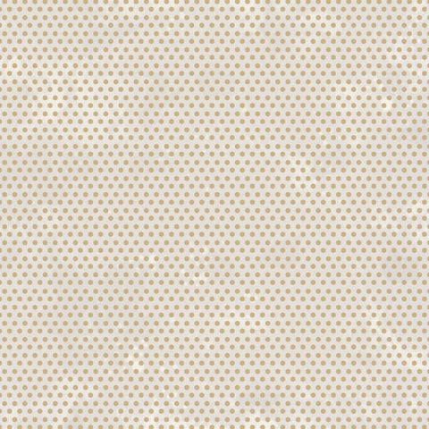 Starry Night 12 x 12 Scrapbook Paper - Radiant